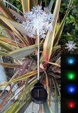 Lumière solaire extérieure de jardin de nouveauté