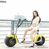 싼 전기 자전거 장비 350W 20 인치 전기 자전거 모터 장비