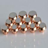 Elektrische Kupfer-Spitzen für Minisicherung
