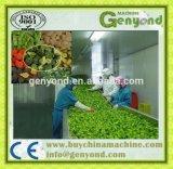 De Installatie van het Proces van de Groenten van de hoge Efficiency IQF
