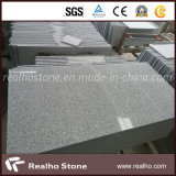 Azulejos de suelo grises claros de la piedra del granito G603 para al aire libre y de interior