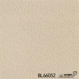 Azulejo de suelo de cerámica áspero rústico del cemento del material de construcción (600X600m m)