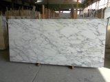 Laje de mármore nova de Statuario para bancadas e materiais de construção