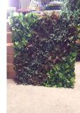 Piante di alta qualità e fiori artificiali del giardino verticale Gu-Mx2091441