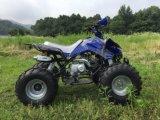 110cc резвится ATV с полноавтоматическими шестернями для малышей
