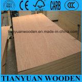 Bintangor hizo frente a la madera contrachapada 8m m de los muebles