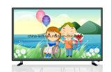 Affichage à cristaux liquides 2016 bon marché de la vente en gros TV de prix usine LED fait dans le prix de la Chine LED TV en l'Inde/Yémen/Syrie/Irak/Amérique latine