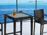 A barra Uv-Resistente do Rattan da mobília ao ar livre popular do jardim do projeto ajustou-se por Cadeira &Table (YT391)