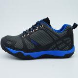 Le bas trekking de qualité chausse des chaussures de sports