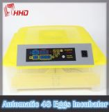 Hhd 48 Goedgekeurd Ce van de Incubator van het Ei van de Kip van het Tarief van Eieren Hoog Uitbroedend Automatisch