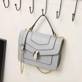 Dz023. Dame-Beutel-Entwerfer-Handtaschen-Form-Handtaschen-Schulter-Beutel-Frauen-Beutel-Kurier-Beutel-Leder-Handtaschen-Form-Beutel