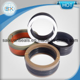 Sello mecánico combinado V caliente de la tela de goma del anillo de cierre del precio de la venta mejor