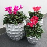 Potenciômetro decorativo da planta da flor Fo-312 para o jardim Home