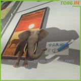 Impresión decorativa de la etiqueta engomada de la pared del árbol de familia de DIY