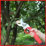 Ножницы лития вырезывания Brahches оливкового дерева Koham большие