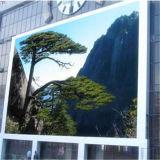 Intense écran polychrome extérieur de rideau en luminosité P10 DEL