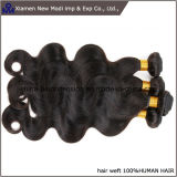 Tessuto di trama dei capelli umani di estensione dei capelli umani