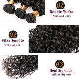 Курчавое бразильских людских сырцовых волос цвета черноты самого низкого цены Fdx Kinky