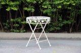 ホームおよび庭のための円形の折る鉄のコーヒーテーブル