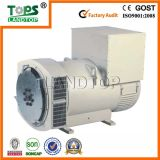 TOPS STF Series AC Synchronous 30kw Alternator Generator