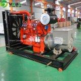 Syngas/gruppo elettrogeno del biogas/biomassa/gas naturale