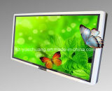 84 '' 3D de interior Advertizing Display con Highlight