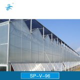 Парник стекла Multi-Пяди Sp-V-96 Venlo