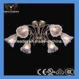 LAMPEN-Farbton CER des heißen Verkaufs-2014 Glas, Vde, UL, RoHS Bescheinigung