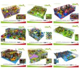 BerufsManufacturer Commercial Indoor Playground mit SGS Approved