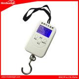 현금 검사를 위한 UV 레이저 광이 디지털 수화물에 의하여 50kg 휴대용 디지털 가늠자 오른다