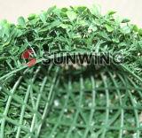 معمل حديقة اللون الأخضر لبلاب سياج كرة [بوإكسووود] سياج اصطناعيّة
