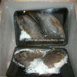 Frutti di mare congelati automatici, macchina di pellicola d'imballaggio dello Shrink dei pesci