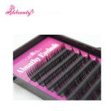 Eyelashes Extension 0.05 / 0.07 / 0.1 / 0.15 / 0.2 / 0.25 (7-16mm) Maquillage Faux Cils de soie individuels