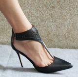 破裂音の標準的な方法ハイヒールの女性服靴(HCY02-1883)