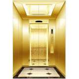 Manufatura profissional do elevador do passageiro