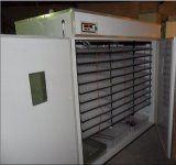 Incubateur automatique prouvé par CE d'oeufs de volaille (KP-22)