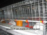 un matériel de cage de poussins de poulette de bâti
