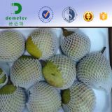 Vendite calde nella rete del manicotto della schiuma plastica del commestibile del mercato dell'America per proteggere la frutta