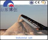 Agente de la nieve y cloruro de sodio de fusión