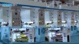 Qualité 8 Color Printing Machine pour le film plastique dans Sale