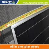 Профессиональное изготовление 8W к солнечному уличному свету 80W