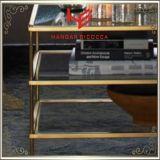 Tabella moderna dell'angolo della Tabella del lato della Tabella della mobilia della mobilia dell'hotel della mobilia della casa della mobilia dell'acciaio inossidabile della Tabella di sezione comandi del tavolino da salotto della Tabella di tè (RS161004)