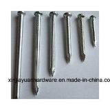 De concrete Spijkers van het Roestvrij staal/Goede Kwaliteit met de Spijkers van de Lage Prijs