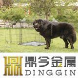 Het openlucht Huis van de Hond van Partable van het Metaal