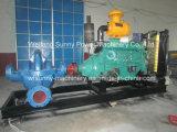 바나나 플랜트를 위한 고압 디젤 엔진 수도 펌프는 에쿠아도르에서 적용했다