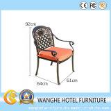 Стулы мебели сада рамки металла Китая напольные
