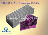 Profilo di alluminio approvato dello SGS per il dissipatore di calore (con TS16949: 2008 certificato)