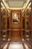 Привлекательный лифт пассажира с конкурентоспособной ценой