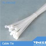 De plastic Nylon Banden van de Kabel (yl-T4X250)