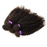 ねじれた毛の自然な毛の拡張、バージンのモンゴルのねじれたカーリーヘアー